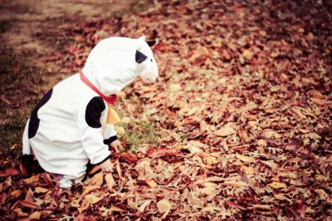Halloween13-4_zpse104bfec